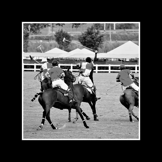 Polo sport -