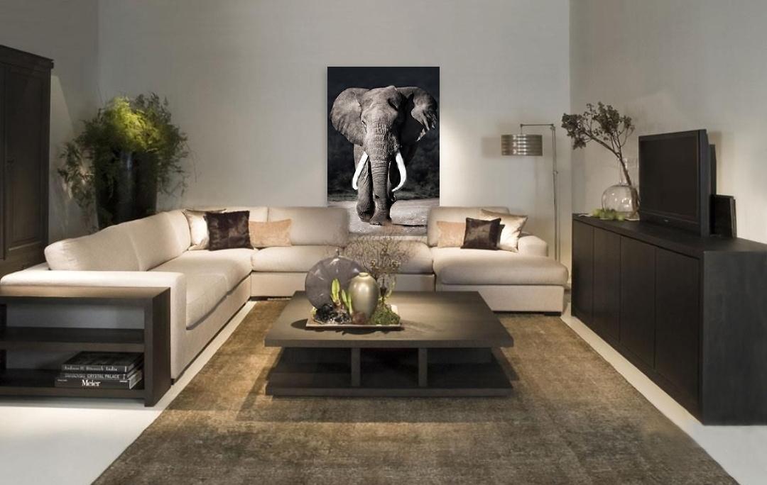 Elephant approaching-4