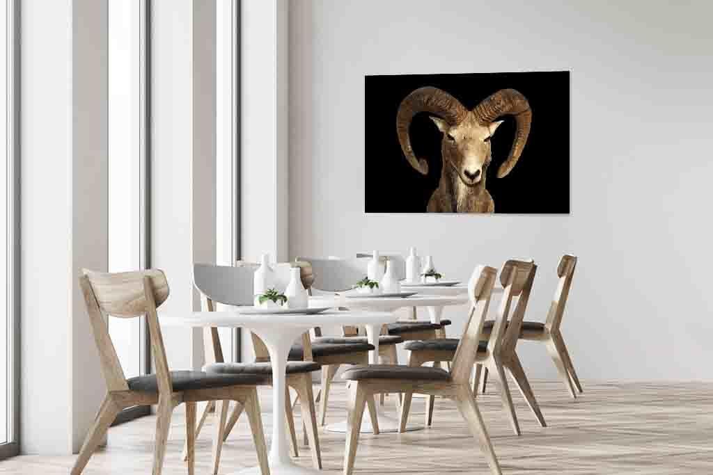Goat1-5