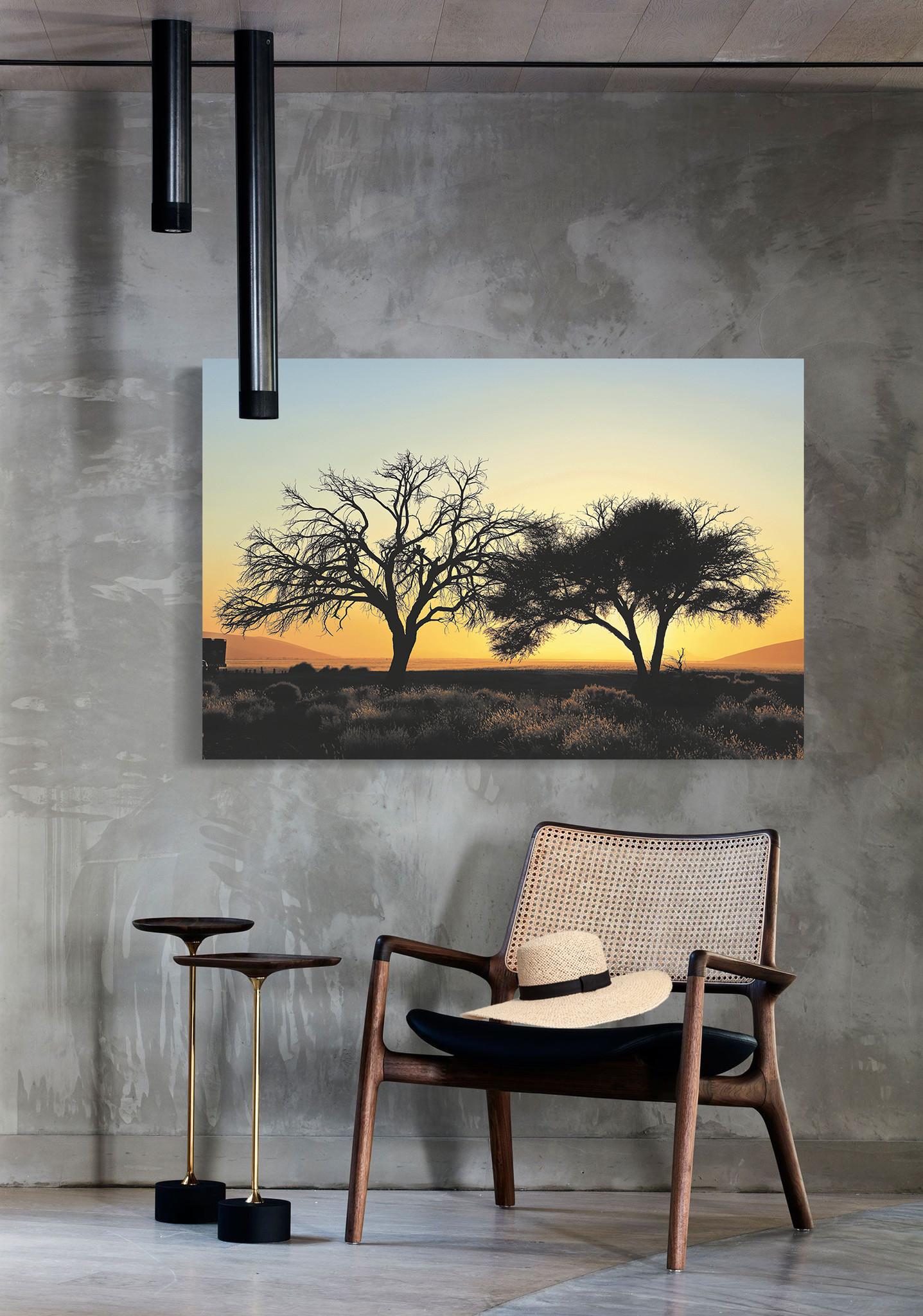 Desert trees-3