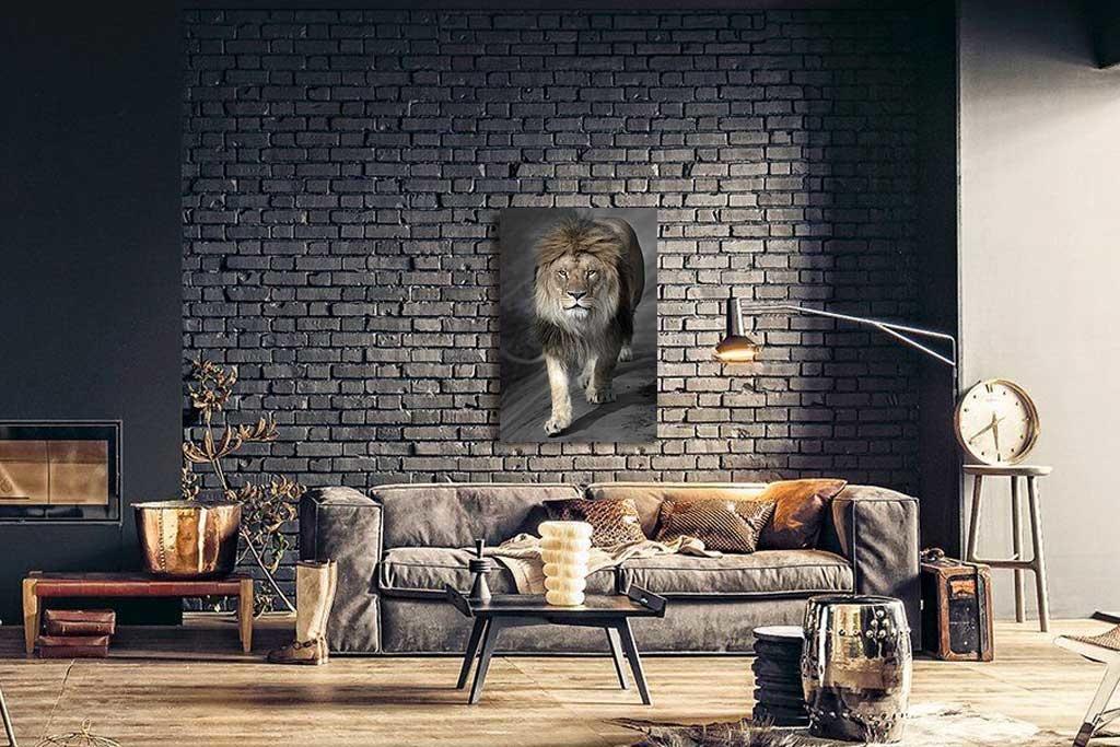 Perfect lion-3