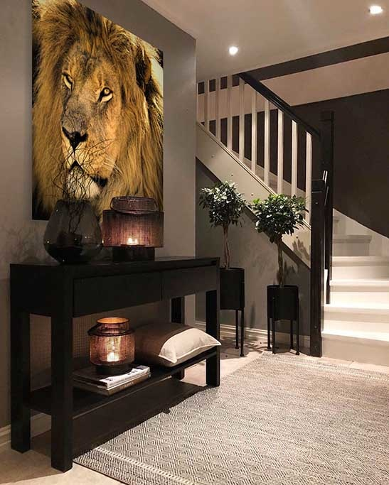Awesome lion-2