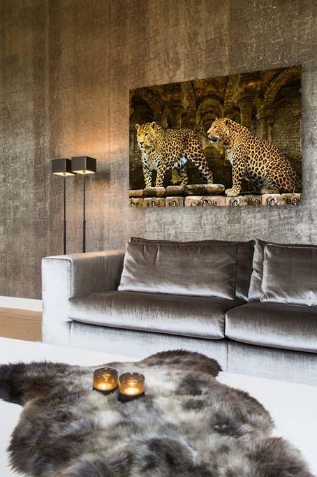 Leopards-4