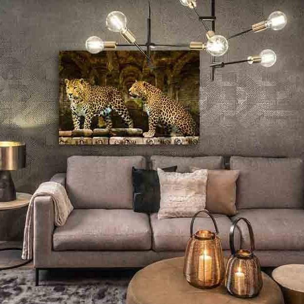 Leopards-5