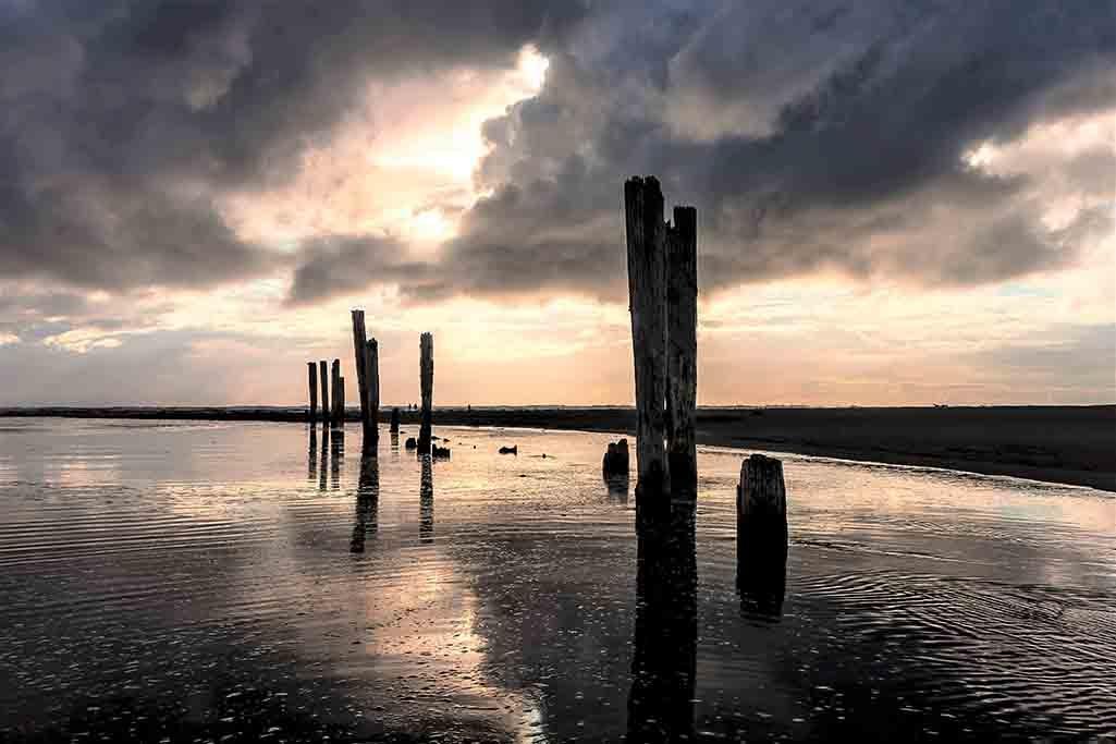 Wooden poles in water-1