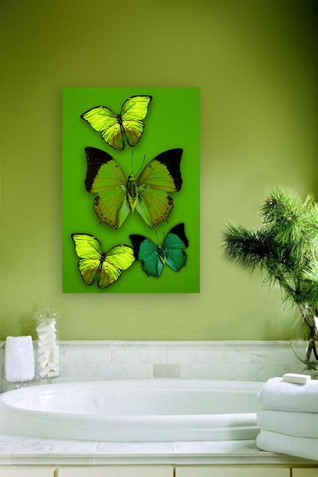 Butterfly flirt-3