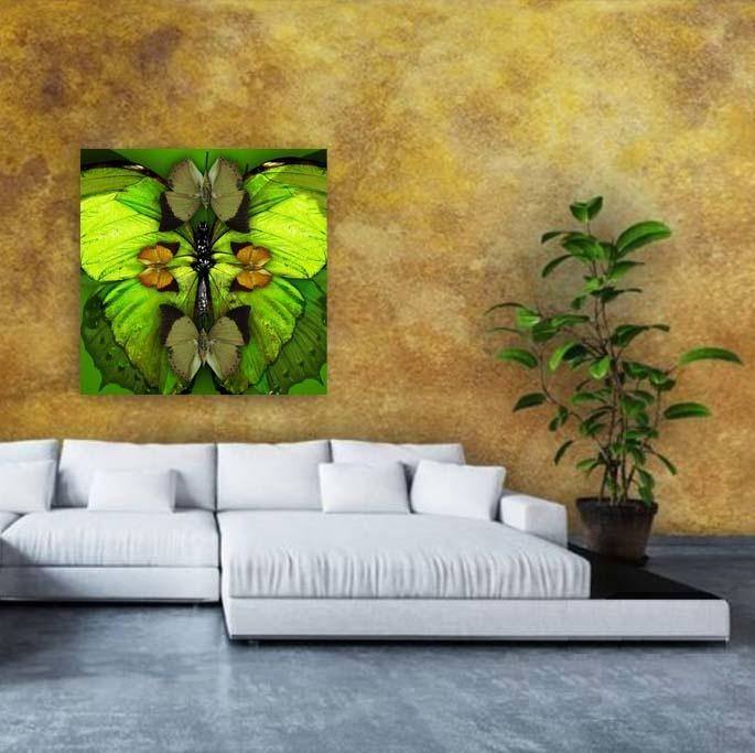 Fabula mariposas-5