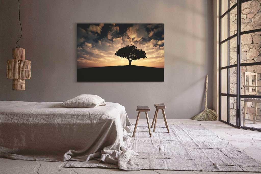 Tree sunset-2