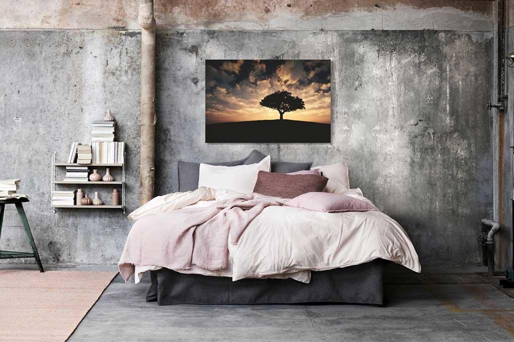 Tree sunset-4