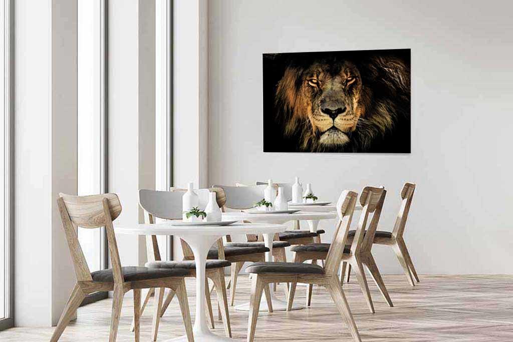 Fabula lion-3
