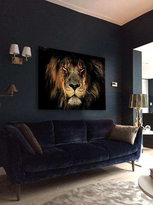 Fabula lion-5