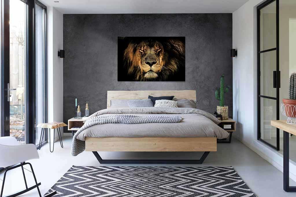 Fabula lion-4