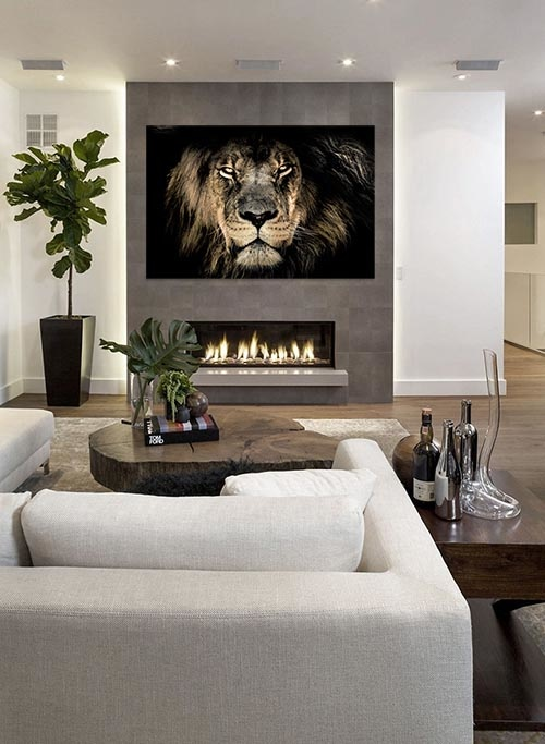 African lion-3