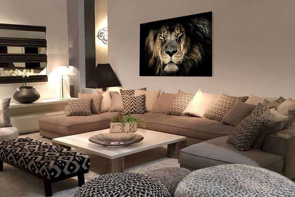 African lion-2