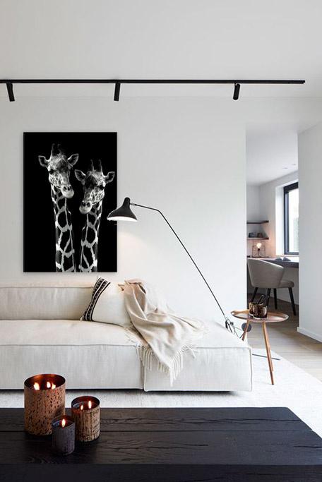 Giraffes on safari-4