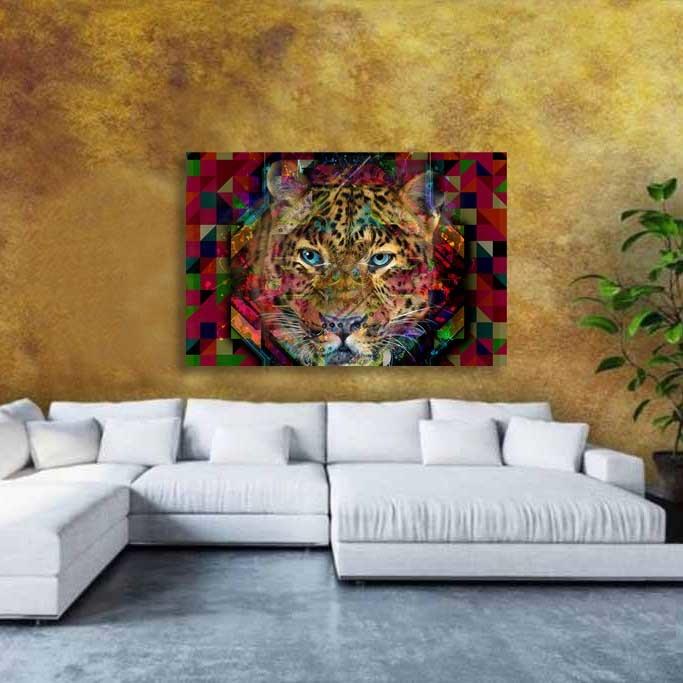 Colourful Leopard-3