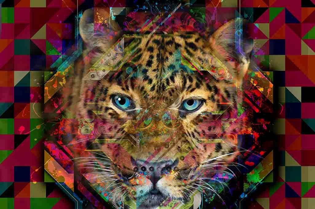 Colourful Leopard-1