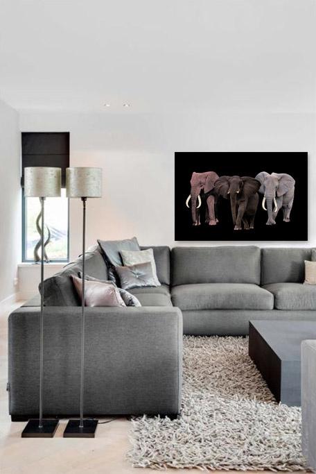Elephant Tribe-5