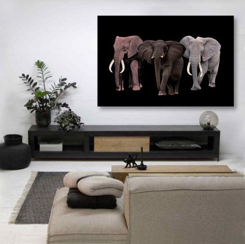 Elephant Tribe-6
