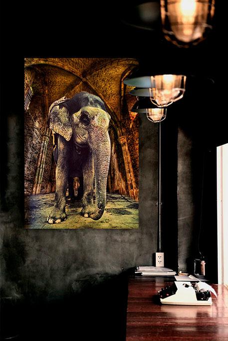 Elephant temple-3