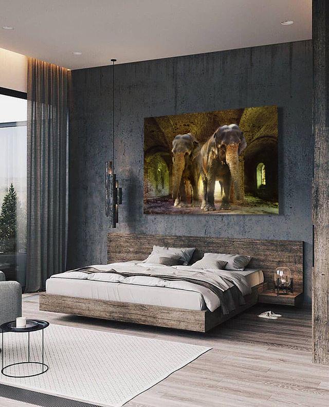 Indian Elephants-4