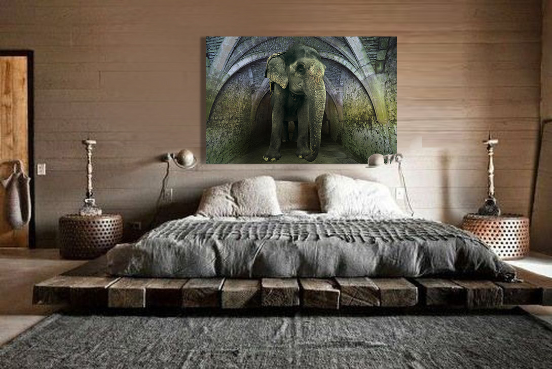 Asian Elephant-4