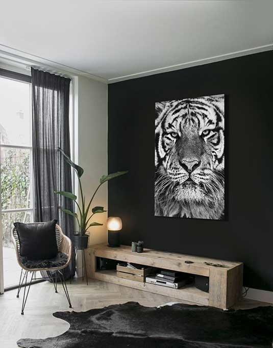 Regal Tiger-4