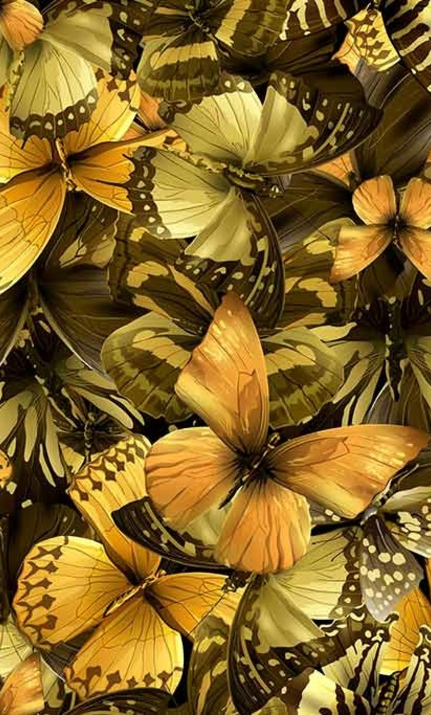 Golden yellow butterflies