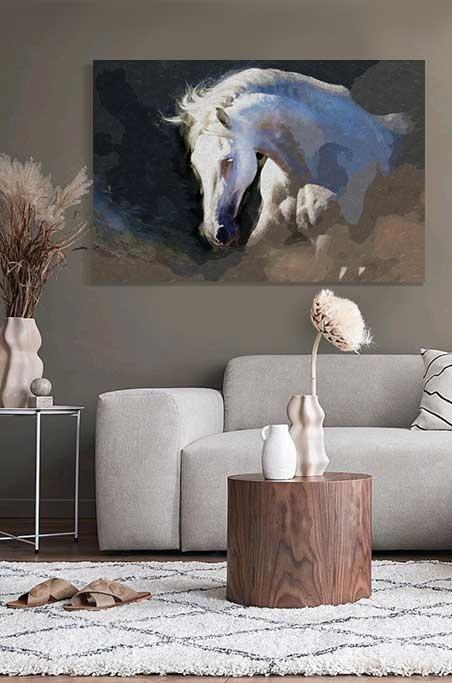 Beautiful white horse-3