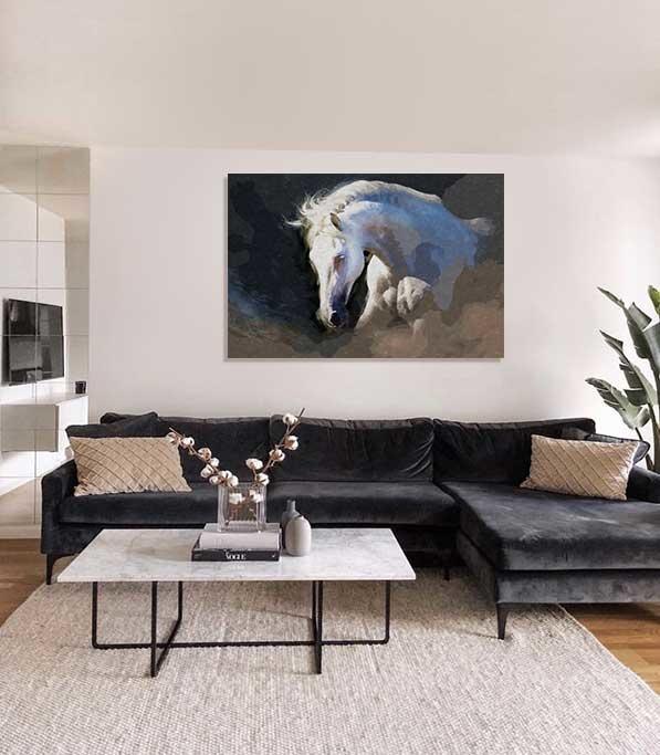 Beautiful white horse-4