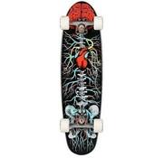Riviera Longboards Riviera Anatomy Of A Skateboard 30'' Cruiser