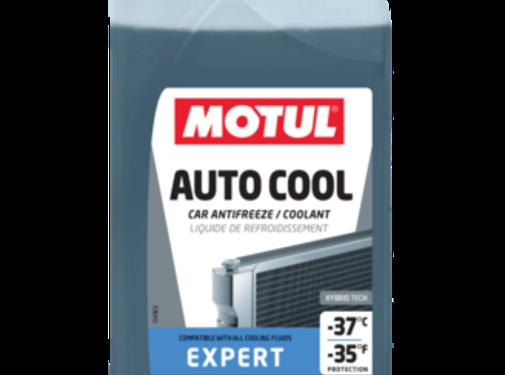 Motul Inugel Expert -37°C
