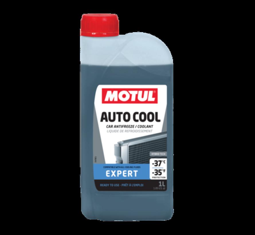 Inugel Expert -37°C - Motul