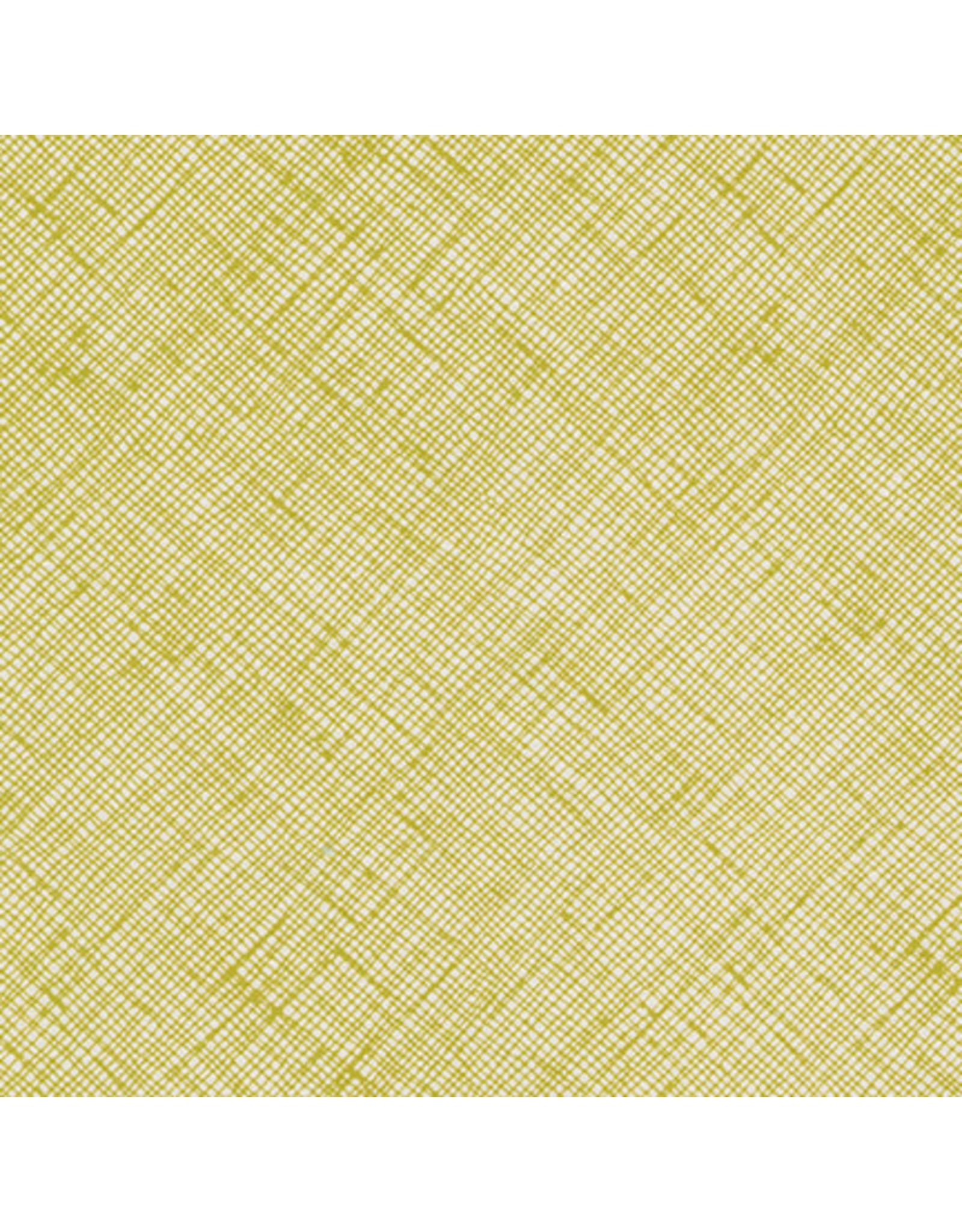 Robert Kaufman Carolyn Friedlander - Architextures Pickle