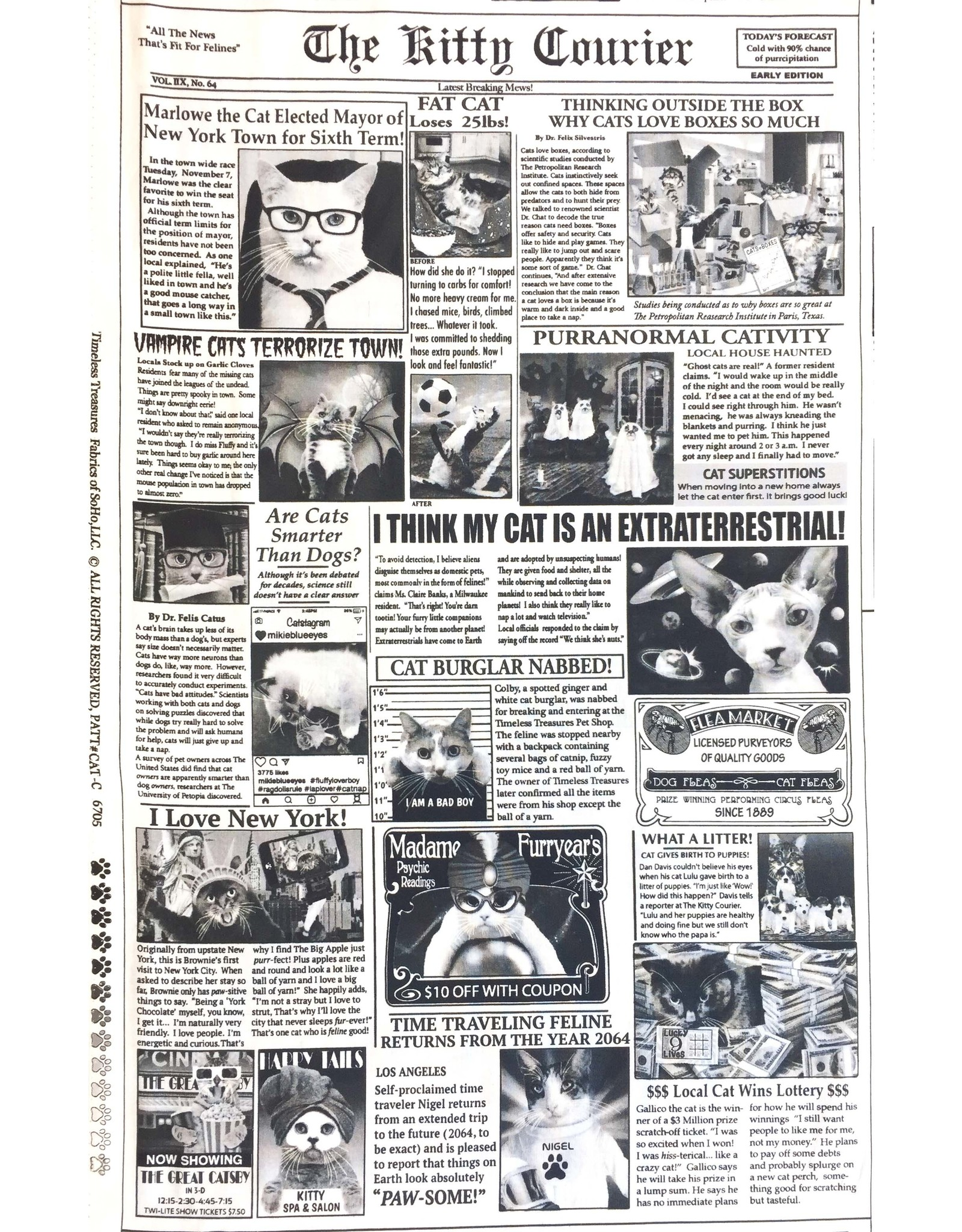 Timeless Treasures Cat - Newsprint