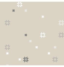 Andover Stealth - North Star Canvas