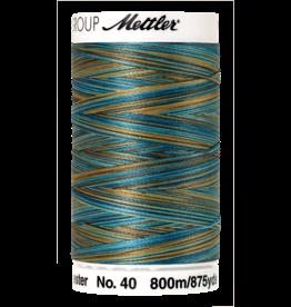 Mettler Poly Sheen Multi - 800 meter 9978