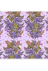 FreeSpirit Bright Eyes - Visitation Lilac
