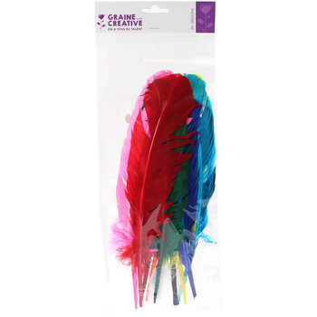 GRAINE CREATIVE Sachet 10 Plumes Indien Coloris Assortis
