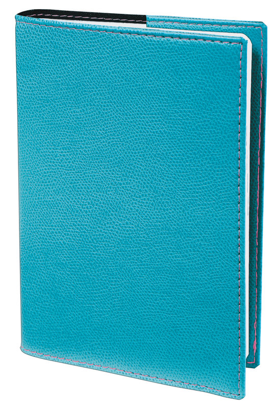 QUO VADIS Agenda scolaire Universitaire rep Club 10x15cm turquoise