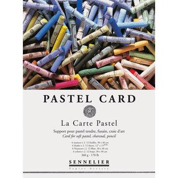 SENNELIER Bloc Pastel Pastel card 40x30cm 12 feuilles
