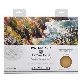 SENNELIER Pochette Pastel Card Monochrome Jaune de Naples