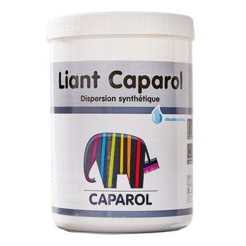 SENNELIER Additif Caparol 1kg