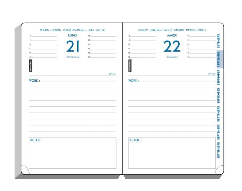 EXACOMPTA Agenda Scolaire 1 jour par page Forum Work & After Vérone 150x100 couleurs aléatoires