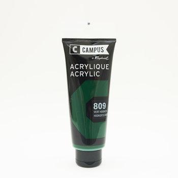CAMPUS Acrylique fine Tube 100ml Vert Hooker