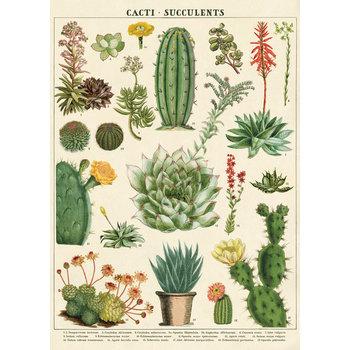 CAVALLINI Poster 50x70cm Vintage Cactus