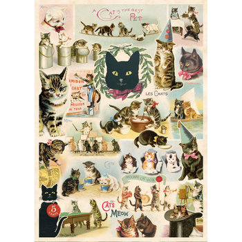 CAVALLINI Poster 50x70cm Vintage Chats
