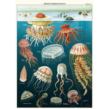 CAVALLINI Poster 50x70cm Vintage Meduses