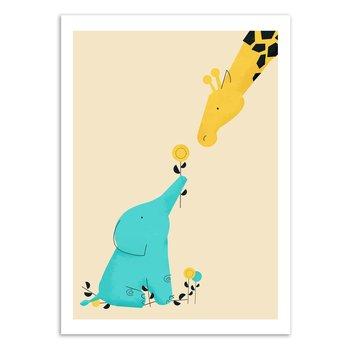 ART POSTER Baby Elephant - Jay Fleck W16246 - 50 x 70 cm