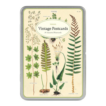 CAVALLINI Set de 18 Cartes Postales Vintage Fougères